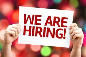 payroll administrator, diss, vacancy, payroll, administrator
