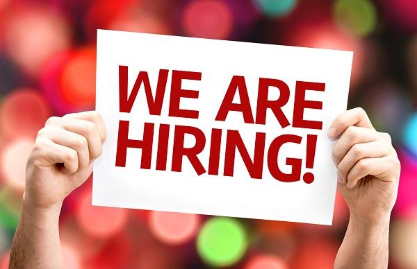 payroll supervisor, diss, vacancy, payroll, administrator